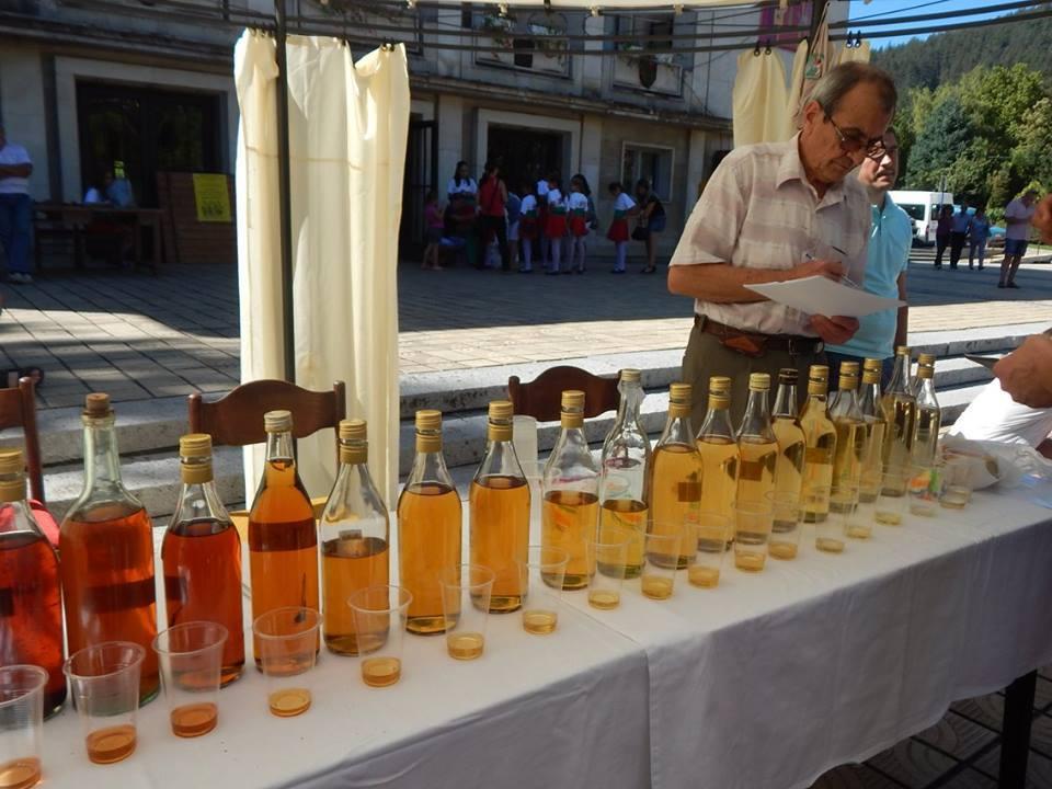 Фестивал на сливата в Троян