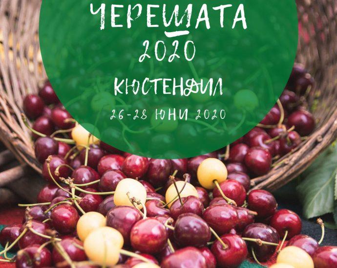 Празник на вкусната кюстендилска череша ще се проведе от 26 до 28 юни