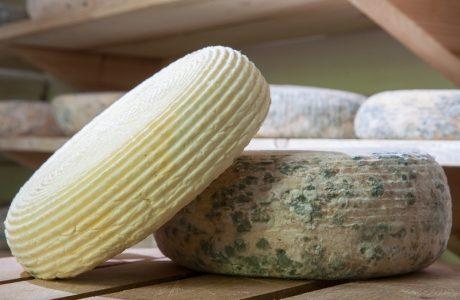 """Гастротур """"Зелено сирене, крокмач и ябланска халва - ела, вкуси"""""""